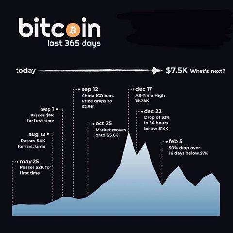 Bakkt bitcoin trading total
