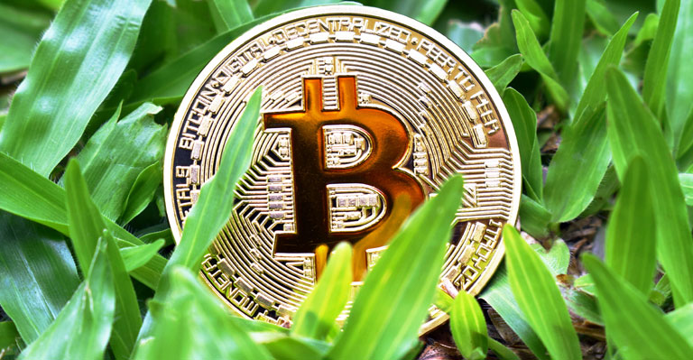 Bitcoin falls below the $35,000 mark, ADA, and XRP gain over 6%